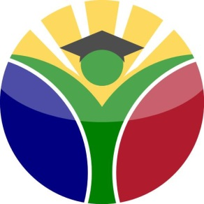 The Mamelodi Initiative